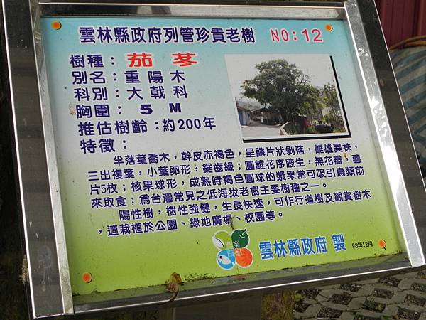 桂林村 (23).jpg