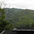 內湖國小 (5).jpg