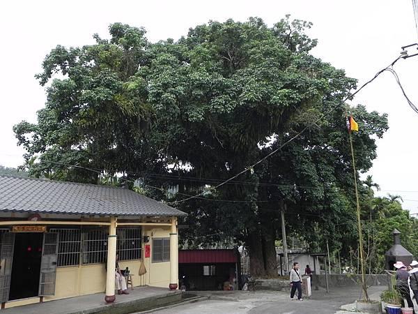桂林村 (26).jpg
