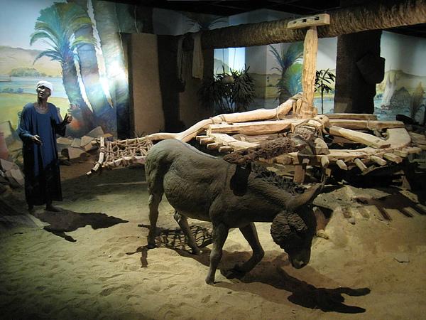 Nubia Museum (40).jpg