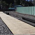 25020487:2011年元旦(二)阿里山小火車
