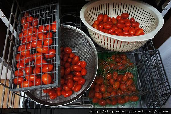 洗蔬果 (4)