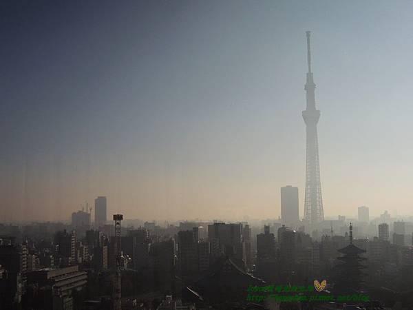 2015東京 3569.JPG