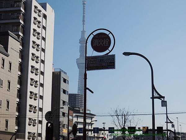 2015東京 3578.JPG