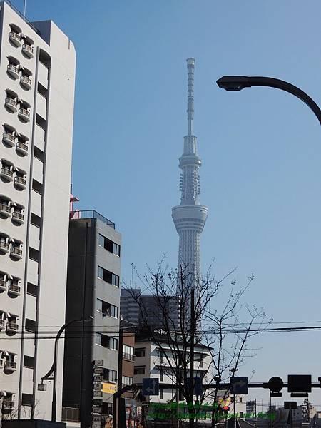 2015東京 3579.JPG