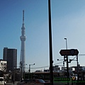 2015東京 3580.JPG