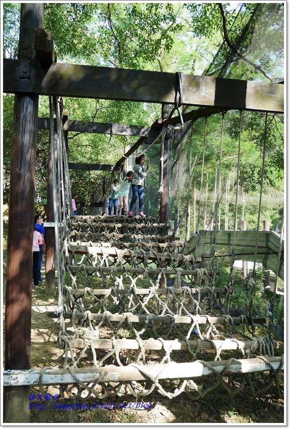 1482458151 1584603673 - 台中景點︱山河戀咖啡休閒農場~大坑步道旁的休閒農場 露營、烤肉、山訓、滑草、漆彈 風光明媚 適合聚會活動、親子遊(舊名綠野山莊)