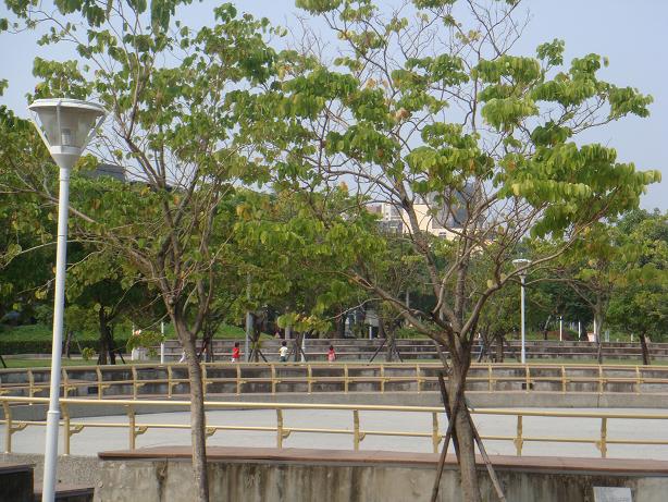 公園散步 (3).jpg