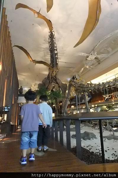 2011.08.10 台灣博物館 (3).JPG