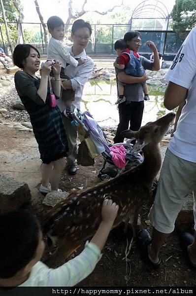 2011.10.08 新竹動物園 (21).JPG