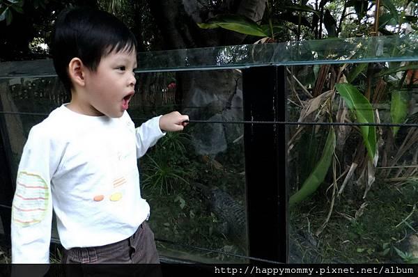 2011.10.08 新竹動物園 (31).jpg