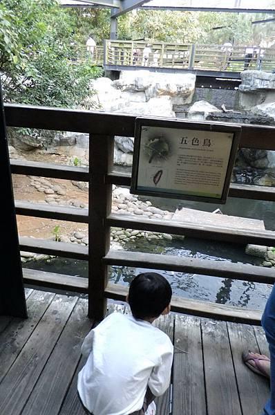 2011.10.08 新竹動物園 (34).JPG