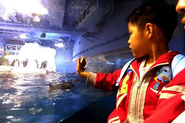 2012.05.01 墾丁之旅 海洋生物博物館 (23)