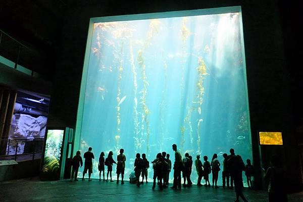 2012.05.01 墾丁之旅 海洋生物博物館 (28)
