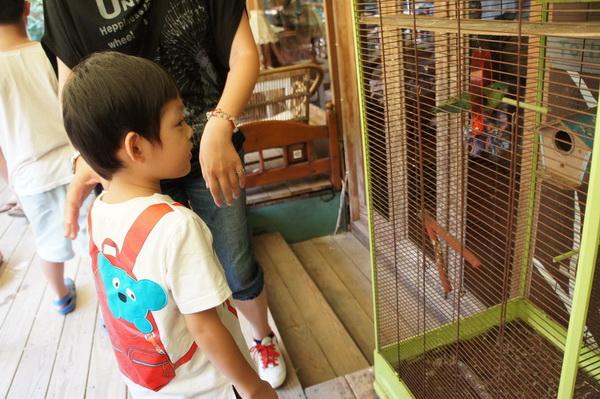 2012.09.09 兔子餐廳 (8)