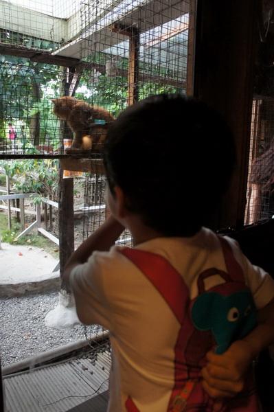 2012.09.09 兔子餐廳 (28)