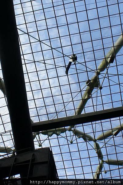 2012.09.23 貓空纜車 動物園 (53)