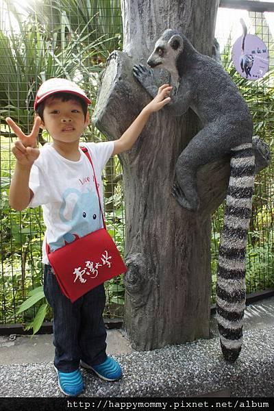 2012.09.23 貓空纜車 動物園 (54)