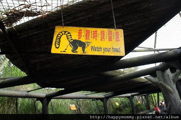 2012.09.23 貓空纜車 動物園 (55)