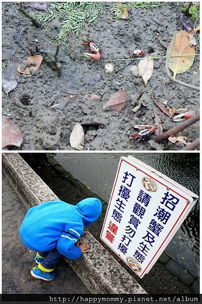 2012.12.02 安平老街 安平古堡  台江綠色隧道 (97)