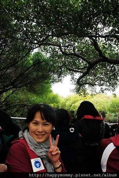 2012.12.02 安平老街 安平古堡  台江綠色隧道 (132)