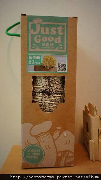 2012 在家種香菇 就是菇黃金菇 (2)