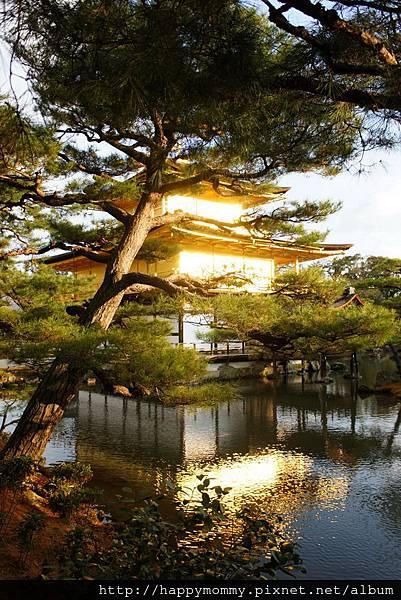 2012.12.25 京都 嵯峨觀光小火車 嵐山電車 金閣寺 (98)