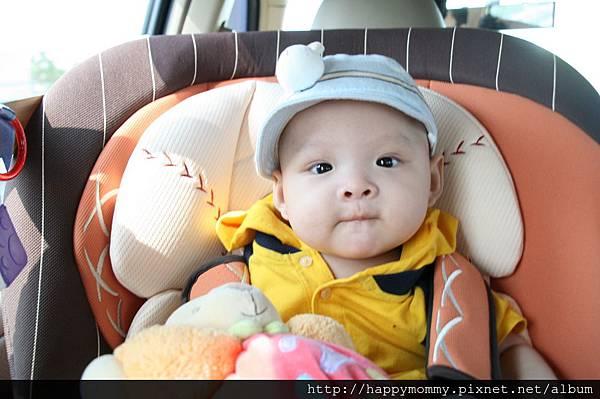 2008.09.07 奇哥 棒球兒童汽車安全座椅 (1)