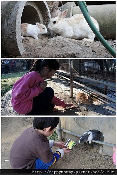 2013.02.11 嘉義獨角仙休閒農場 (23)