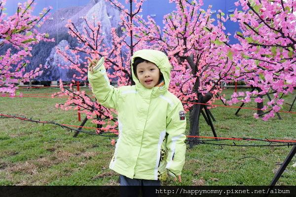 2013.03.03 新竹 台灣燈會 (36)