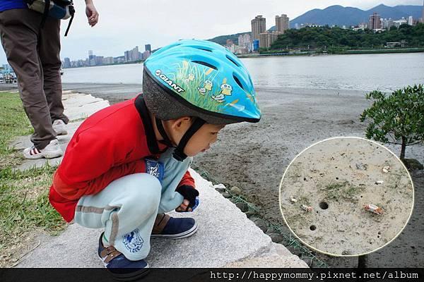 2013.05.05 鐵馬御風 關渡到八里單車道 (7)