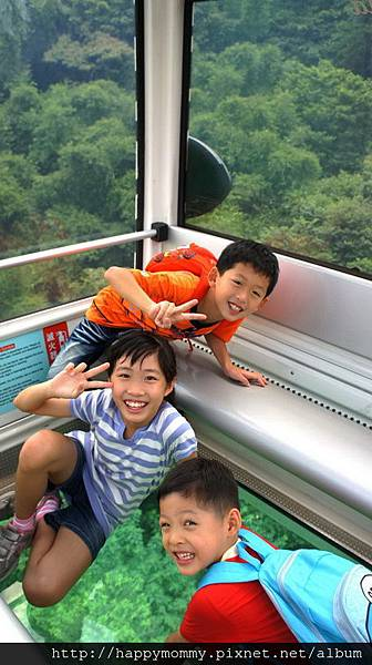 2013.07.10 貓空纜車木柵 動物園 (14).jpg