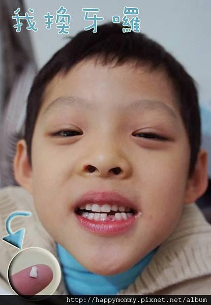 2013.11.28 慶開始換牙囉