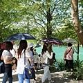 2014.08.28 花蓮遊 租車 鯉魚潭 雲山水 七星潭 (46).JPG