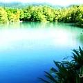 2014.08.28 花蓮遊 租車 鯉魚潭 雲山水 七星潭 (60).jpg
