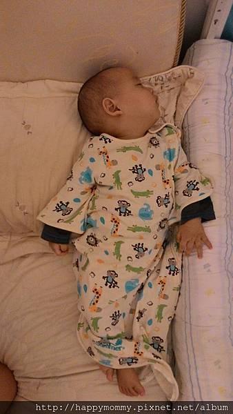 Summer Infant 嬰兒睡袋 1