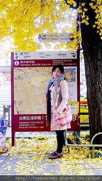 2015 小晴天本舖 空氣媽媽包 (41).jpg