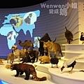 2015.08.29 台北市立動物園 教育中心 恐龍探索館 (3).JPG