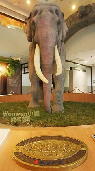2015.08.29 台北市立動物園 教育中心 恐龍探索館 (19).JPG