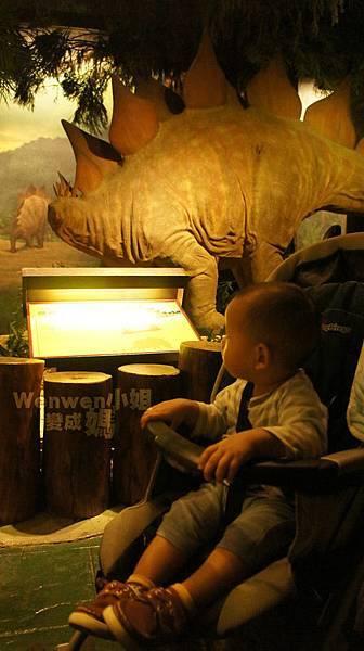 2015.08.29 台北市立動物園 教育中心 恐龍探索館 (29).JPG
