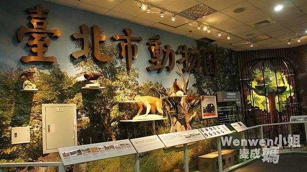 2015.08.29 台北市立動物園 教育中心 恐龍探索館 (37).JPG
