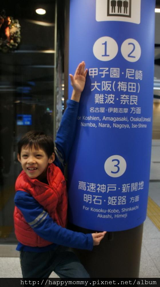 2015.12.15 甲子園棒球場 及甲子園歷史博物館 (1).jpg