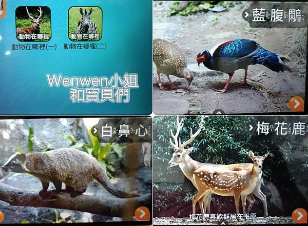 2016.09 兒童學習平板-KIZIPAD付費app(3).jpg