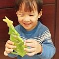 2017.12.09 耶誕樹剪紙 耶誕布置diy (14).jpg
