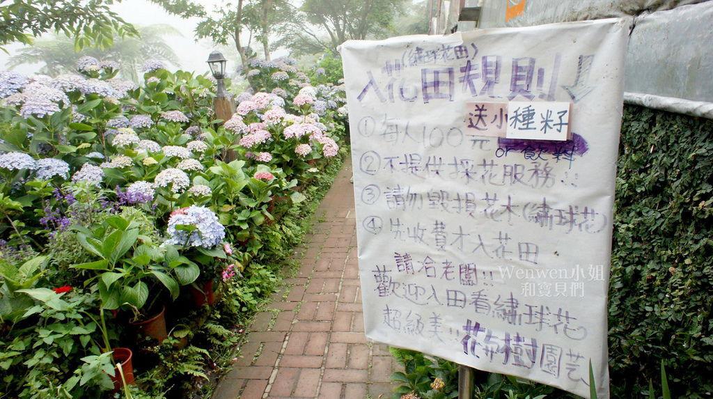 2018.06.03 陽明山竹子湖繡球花季  花與樹園藝 (1).JPG