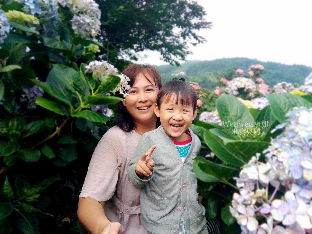 2018.06.03 陽明山竹子湖繡球花季  花與樹園藝 (16).jpg