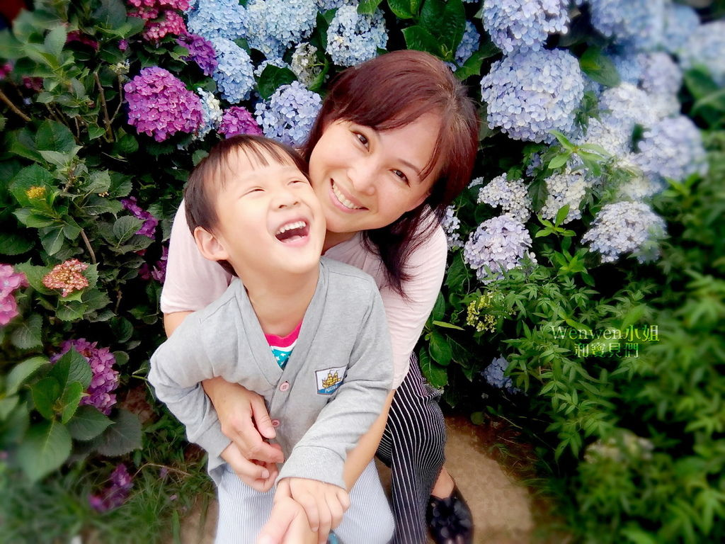 2018.06.03 陽明山竹子湖繡球花季  花與樹園藝 (19).jpg