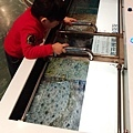 2017.12.31 基隆海科館 國立海洋科技博物館 (15).jpg