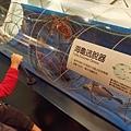 2017.12.31 基隆海科館 國立海洋科技博物館 (19).jpg
