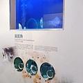 2017.12.31 基隆海科館 國立海洋科技博物館 (25).jpg